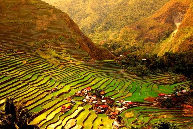 """Ruộng bậc thang Bananue được mệnh danh là """"kì quan thiên nhiên thứ 8"""" của thế giới"""